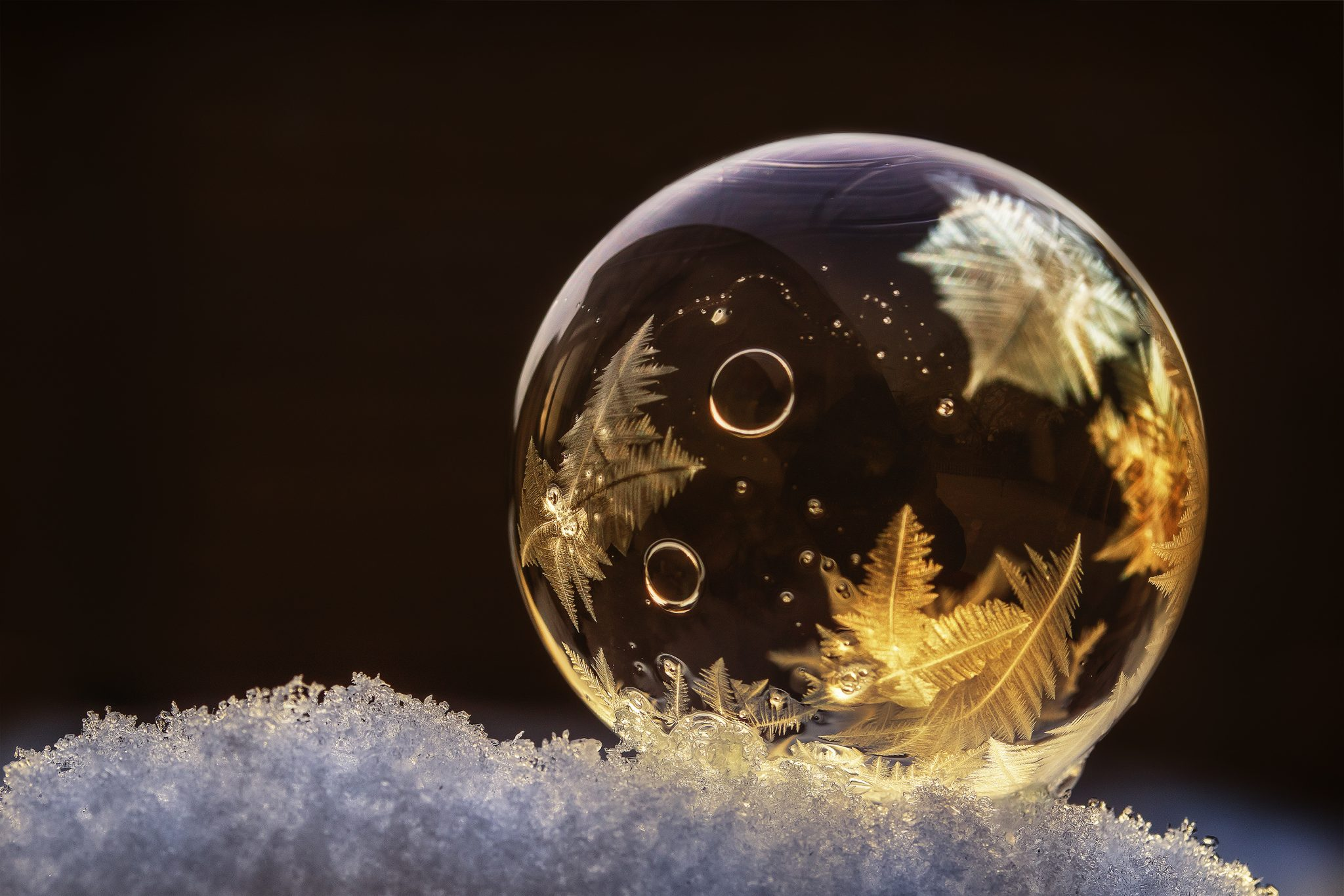 Snow day activities - frozen bubble